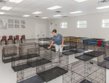 Humane Society calmly shelters pets before the storm