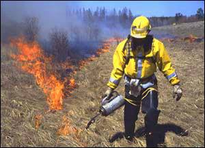 Prescribed burn planned for state park