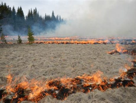 Prescribed burns planned for state park this week