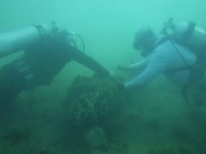 Off our coast, the hunt for sunken treasure | 32963 News