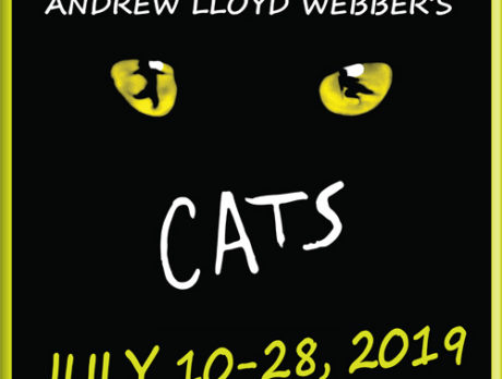 'Cats' just scratches surface of intriguing Guild season